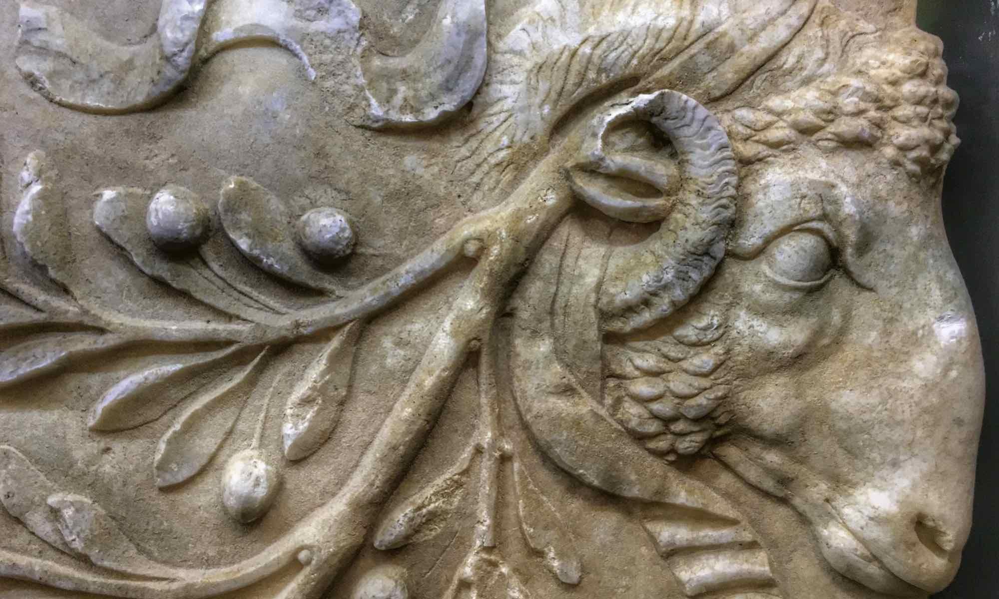 REPERTI E SIMBOLI: IL RILIEVO CON PROTOMI E ULIVI AL MUSEO DI AMELIA